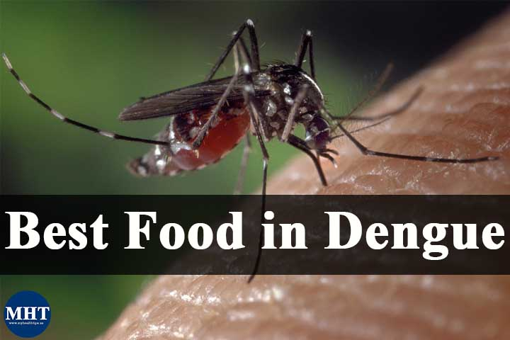 5 Food Items To Help Recover From Dengue Fast