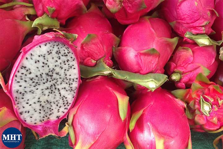 dragon-fruit-dengue-patients-recovery