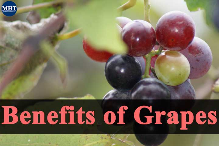 5 Amazing Health Benefits of Grapes