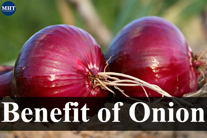 Surprising Benefits Of Onions For Health
