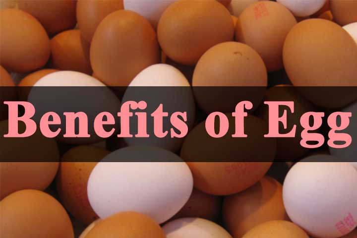 Top 7 Health Benefits of Eating Eggs