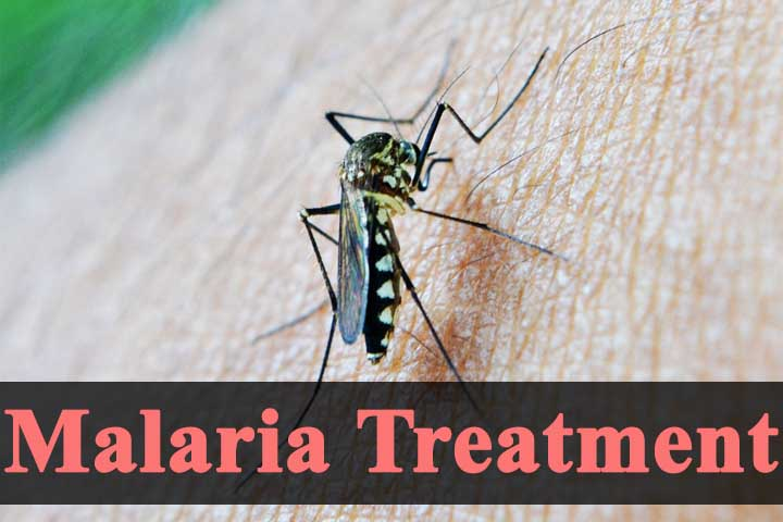 What is best Treatment of Malaria Fever