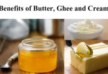Human Health Benefit Components in Butter, Ghee and Cream